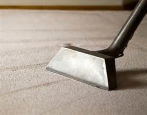 steam cleaning carpeting