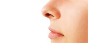 nose smelling